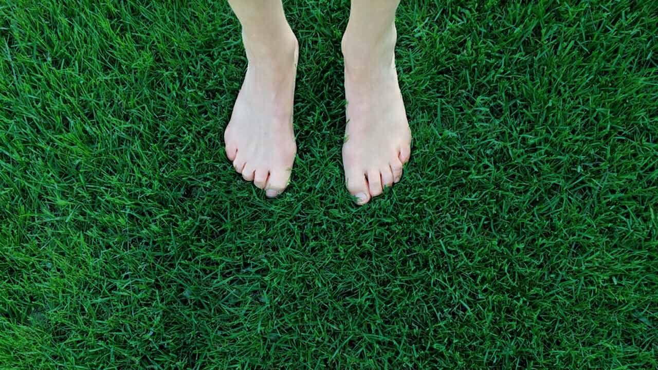 Feet on the grass - Grounding with Gratitude